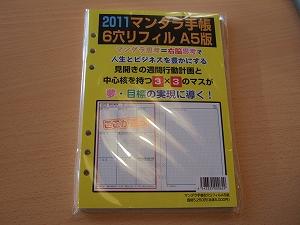2010_11170038.jpg